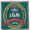 Tsingtao Elvis Hillbilly Cat