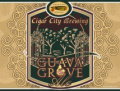 Cigar City Guava Grove Farmhouse Ale