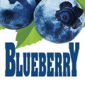 Wachusett Blueberry - Fruit Beer