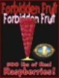 Vermont Pub Forbidden Fruit - Fruit Beer