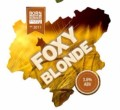 Scottish Borders Foxy Blonde - Golden Ale/Blond Ale