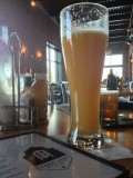 Canal Park Wetsuit Malfunction Wit - Belgian White &#40;Witbier&#41;