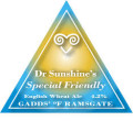 Gadds Dr Sunshines Special Friendly - Wheat Ale