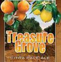 Pensacola Bay Treasure Grove Citra Pale Ale