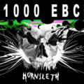 Stronzo 1000 EBC - Imperial Stout
