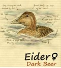 From The Notebook Eider - Stout