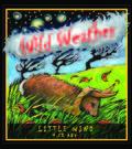 Wild Weather Little Wind