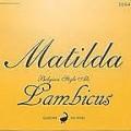 Goose Island Matilda Lambicus