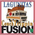 Lagunitas Fusion XIX: CouchTrippin' Fusion Ale