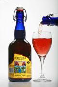 Redstone Blueberry Mountain Honey Wine