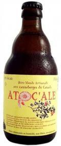 Atocale - Fruit Beer