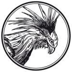 Vier Vogel Pils GbR