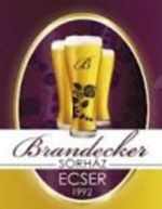 Brandecker S�rh�z