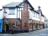 Albion Ale House (Free)