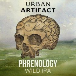 Image result for phrenology urban artifact