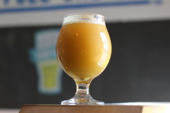 Half Full Brewery