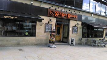 Ginger Goose