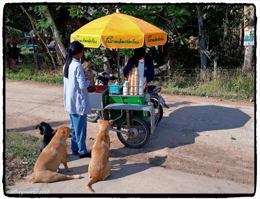Ice-cream vendor