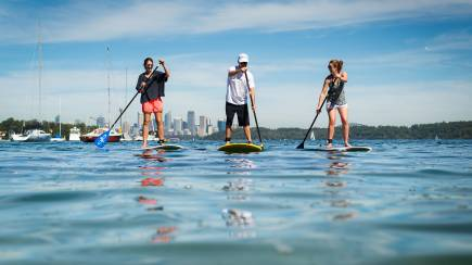 RedBalloon Stand Up Paddle Board on Sydney Harbour with Seafood Picnic