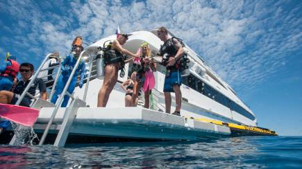 RedBalloon Great Barrier Reef Cruise and Snorkelling - Full Day