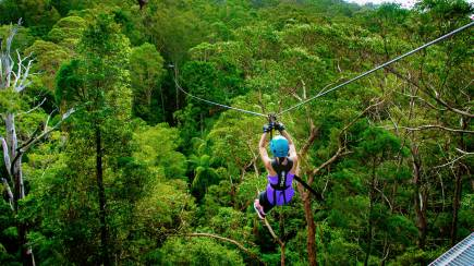 RedBalloon Extreme Zipline Guided Tour - Tamborine