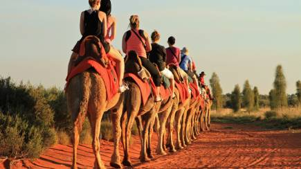 RedBalloon Sunset Camel Ride - 60 Minutes