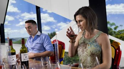 RedBalloon Wine Blending Class and Tasting at d'Arenberg Winery - For 2