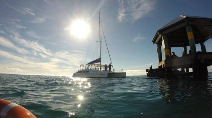 RedBalloon Sailing and Seal Snorkel Tour - Port Phillip Bay
