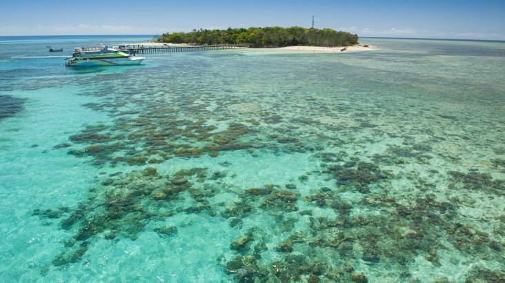 RedBalloon Reef Cruise and Full Day on Green Island - Adult