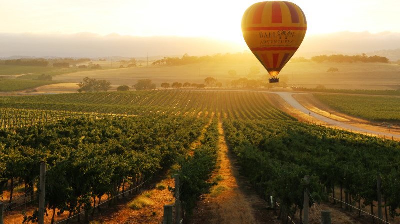 RedBalloon Hot Air Balloon Flight over Barossa Valley with Breakfast