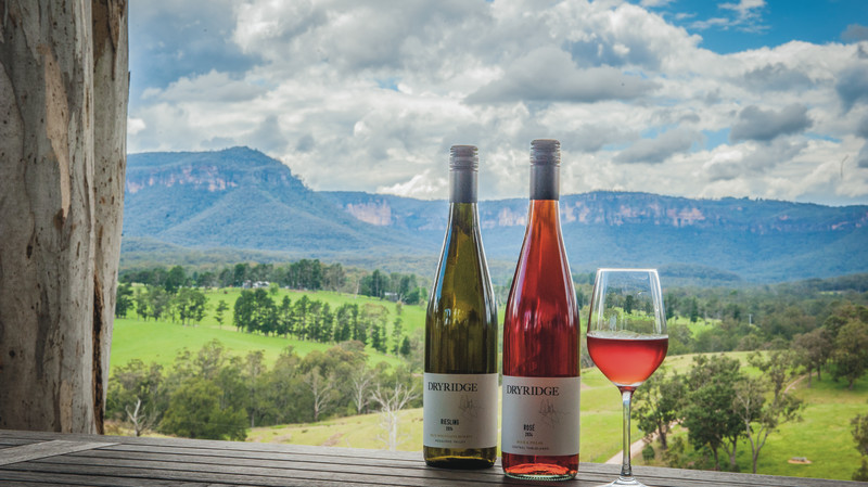 RedBalloon Wine Tasting and Cheese at Dryridge Estate – For 2