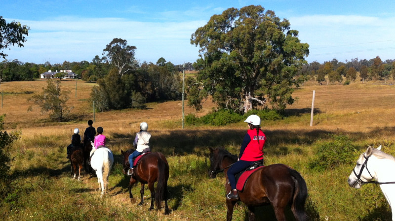RedBalloon Horse Riding Trail Ride - 60 Minutes