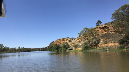 view of the murray river from paddle steamer cruise