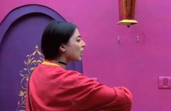 Bani lashes out on housemstes