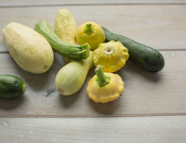 In Season Now: Summer Squash & Zucchini. Find out why this ubiquitous summer vegetable is good for you, how to store it, and what to make.