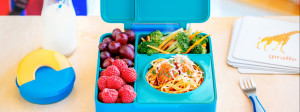 Meet the Children's Lunchbox Even Adults Will Love