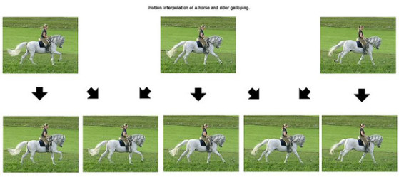 Motion-Interpolation-Chart.jpg
