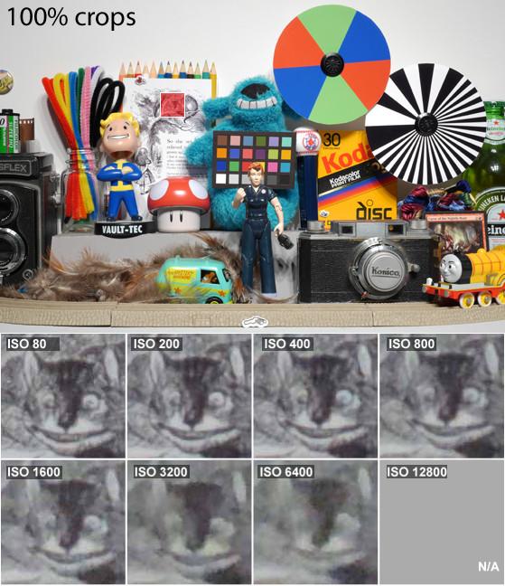 NikonP520_Noise_Cat.jpg