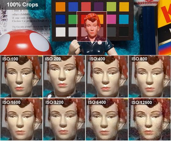 rosie-crops-leica-t.jpg