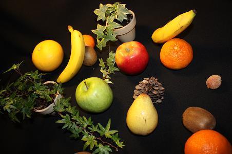 Fruits frais tout simplement