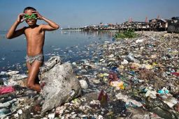 polluted environments