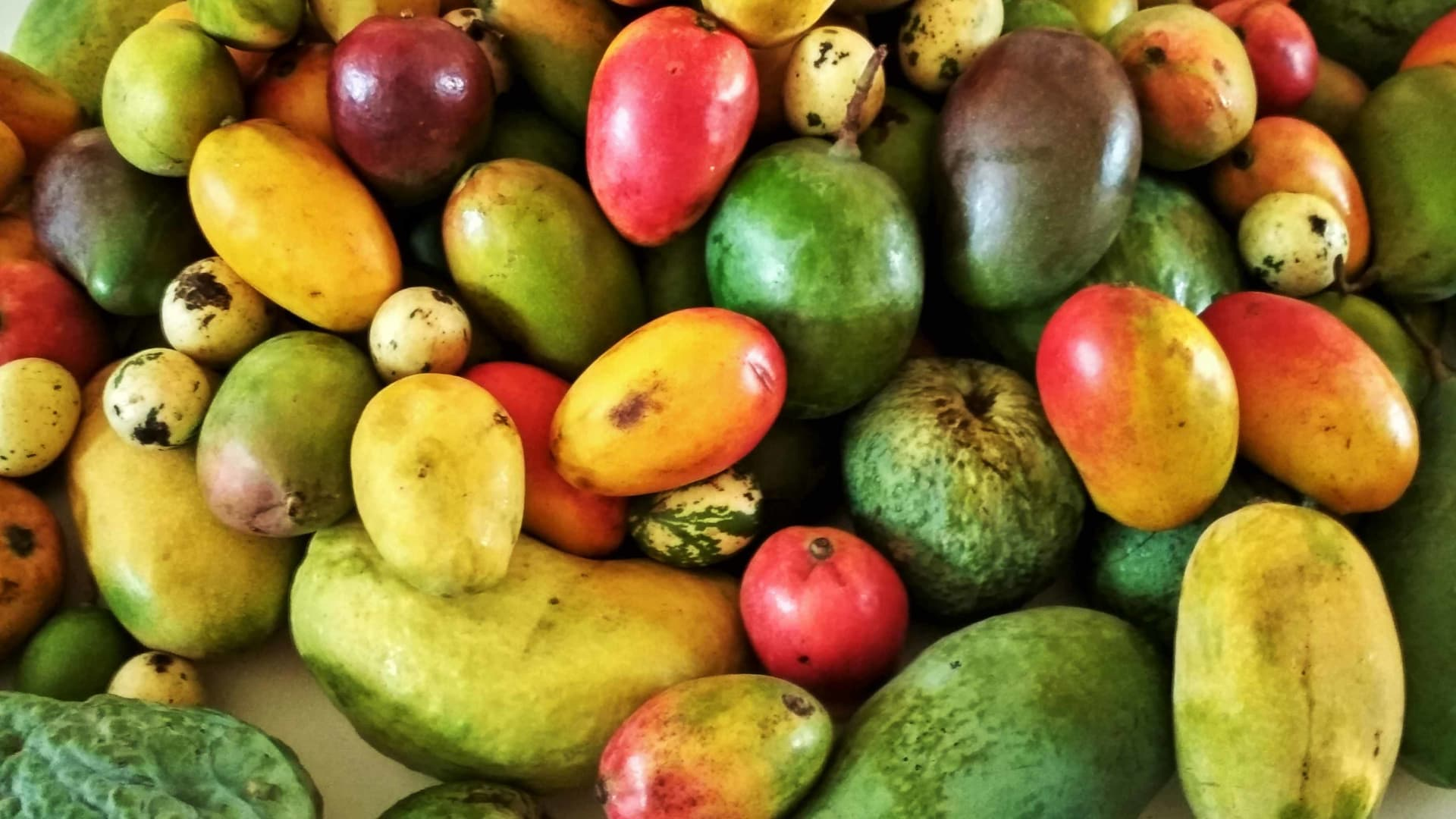 Mad About Mangoes?