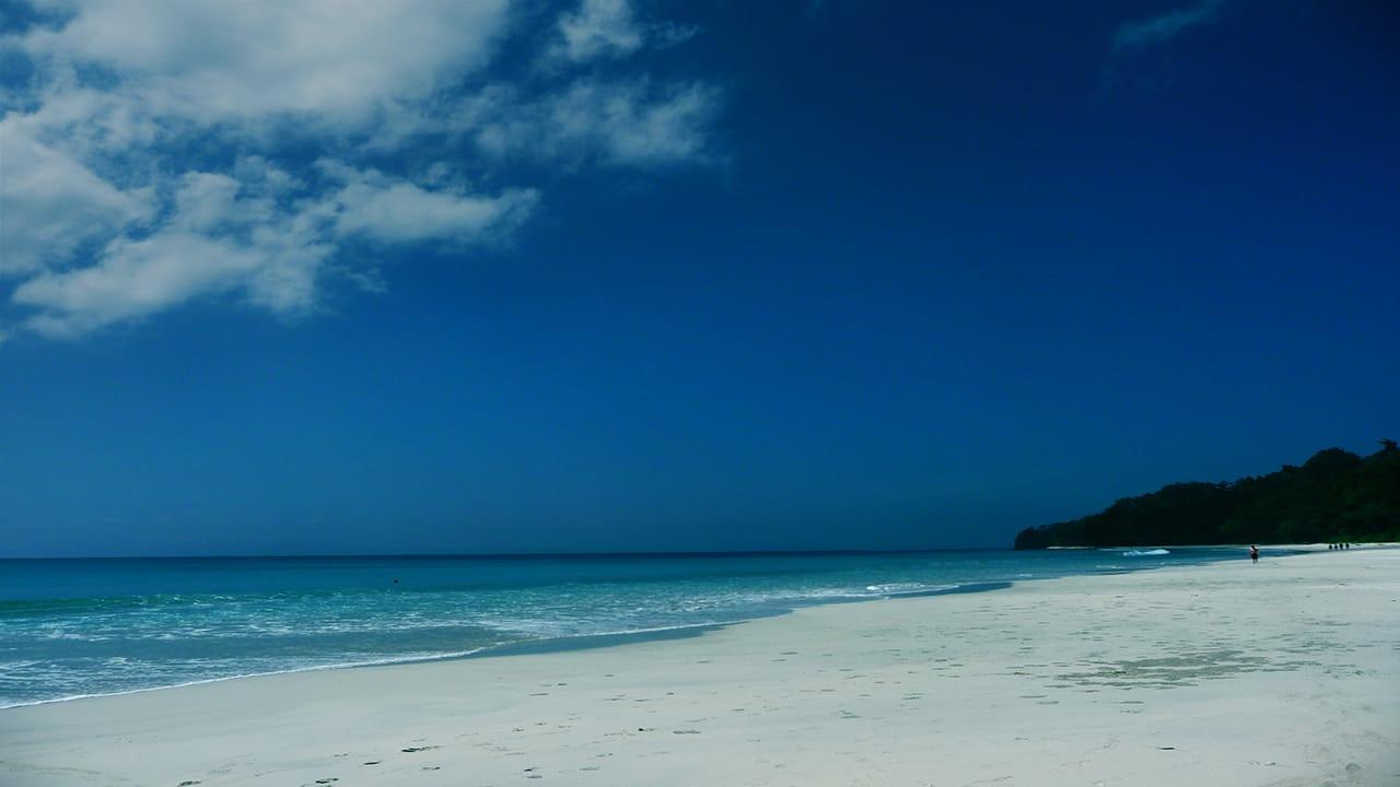 Life is a Beach for Sanjay Manaktala!