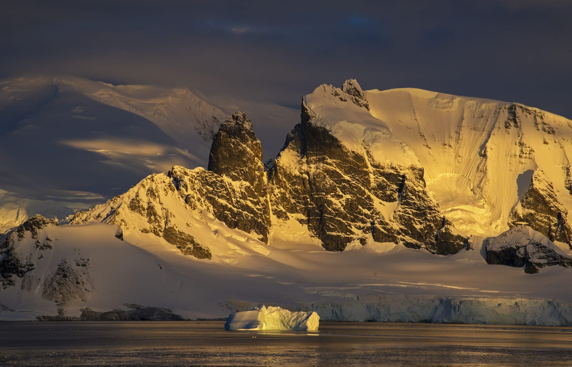 The sun sets over the Antarctic landscape, bathing the snow in a pale, golden light. Antarctica is the only continent that doubles in size in winter, but despite its extreme weather, it is home to its own unique diversity of animal life.