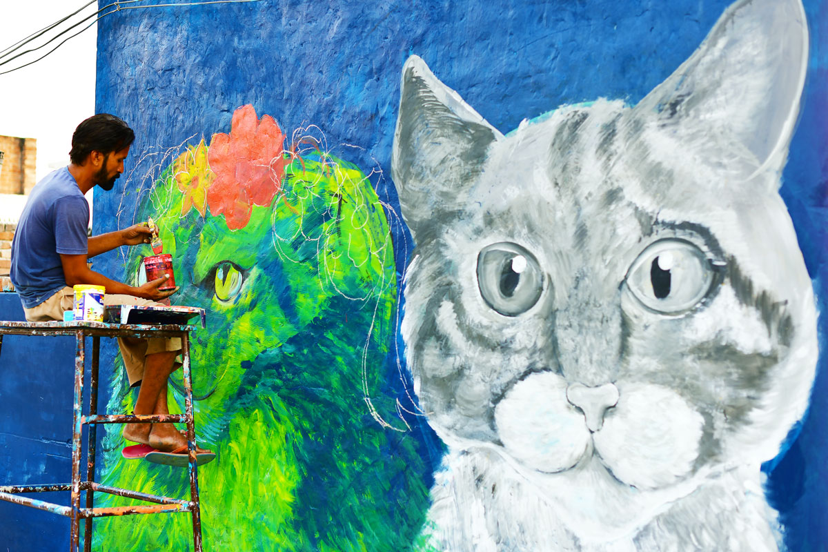 Artist painting cats on the walls of Aloona Tola
