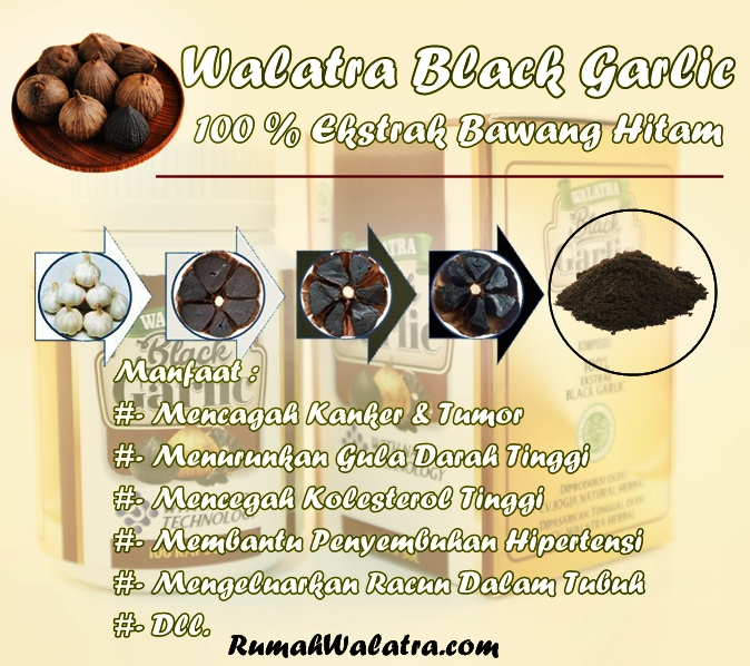 Walatra Black Garlic Kapsul