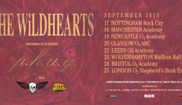 REVIEW – THE WILDHEARTS
