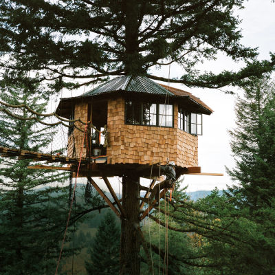 2015 03 treehouse pomonthly daodv3