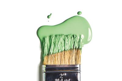 1015 paint zf1lm5