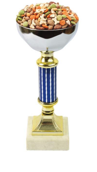0113 dog show trophy yqdqmv